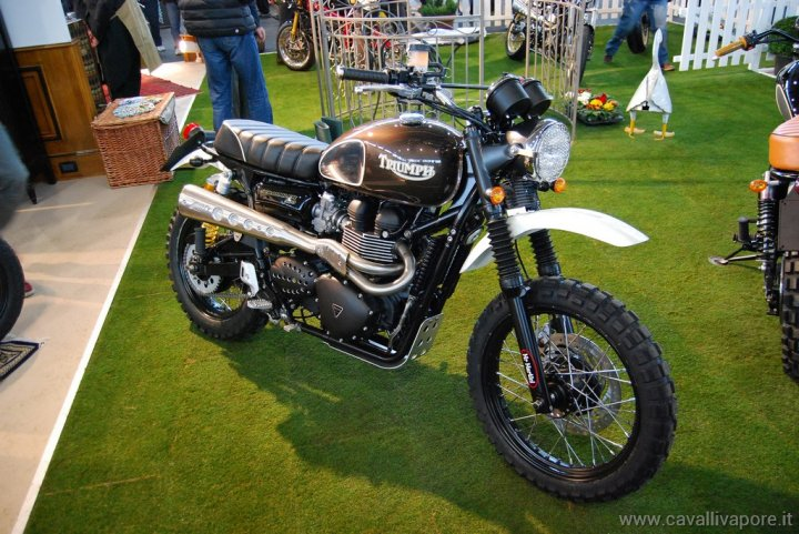 triumph-mrmartini-motor-bike-expo-2014-14