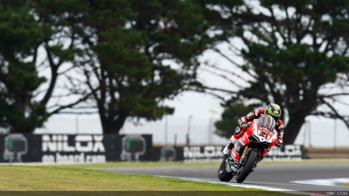 Superbike-2015-Phillip-Island-Gara-2-Troy-Bayliss