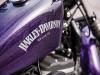 harley-davidson-xl-883n-iron-883-logo