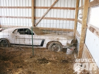Mustang-BOSS-302-02