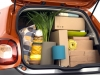 Nuova-smart-forfour-14