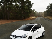 Renault-Clio-RS-EDC-Trophy-11