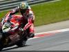 superbike-2014-sepang-gara-1-chaz-davies
