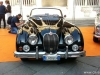 Verona-Legend-Cars-LIVE-25
