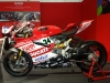 World-Ducati-Week-2014-12