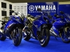 yamaha-race-blu-series-2013_4