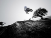 yamaha-yz450f-my-2014-off-road