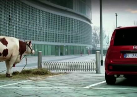 Fiat Panda a 8900 euro e nuovi spot