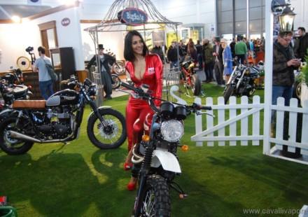 Triumph MrMartini Motor Bike Expo 2014