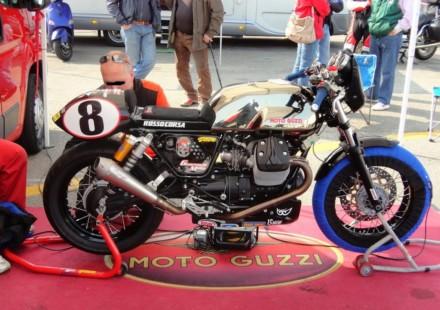 V7 Racer & Guareschi