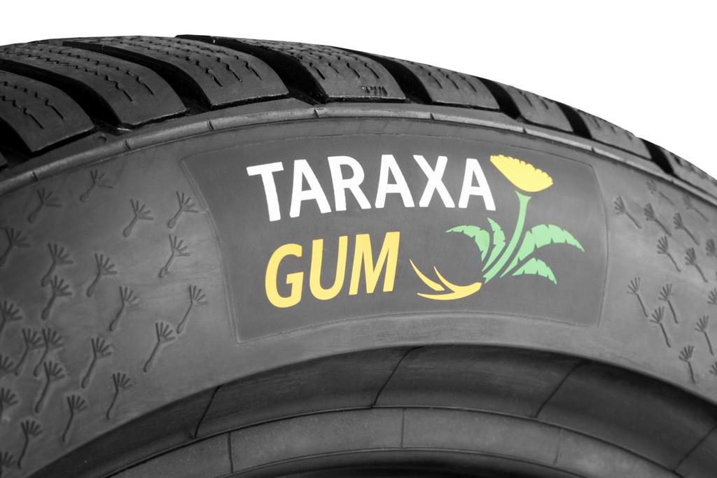 Continental Taraxagum Logo