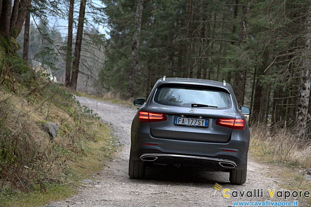 Mercedes GLC 250d 4MATIC Dietro Bosco